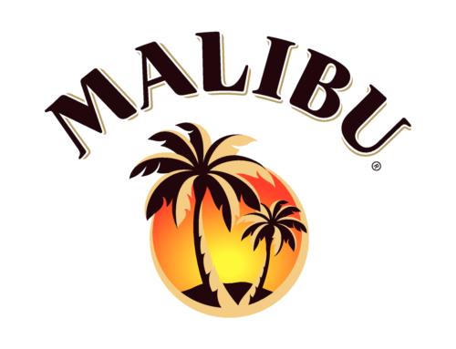 【2018年6月10日(日)開催】anfa 「MALIBU  BECAUSE SUMMER Flair Challenge 2018」